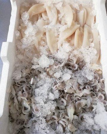 ISI RISTORANTE calamari freschi
