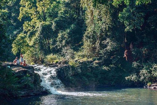 Tarzan Tours Noosa