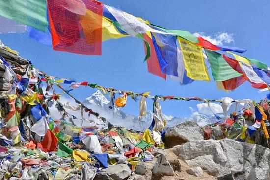 Hi Himalaya Nepal - Treks & Tours