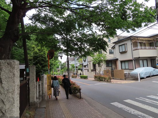 ここから下方に「蝉坂」が続きます。歩道左側が平塚神社境内。