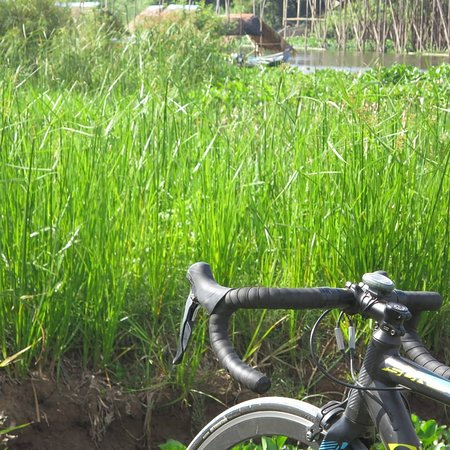 Phnom Penh, Cambodia: Bicycling solo tour to kean svay, kandal province and cycling shots some pictures 🚲📸😅😍