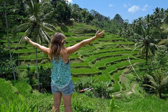 Excursão particular: tudo sobre Ubud...