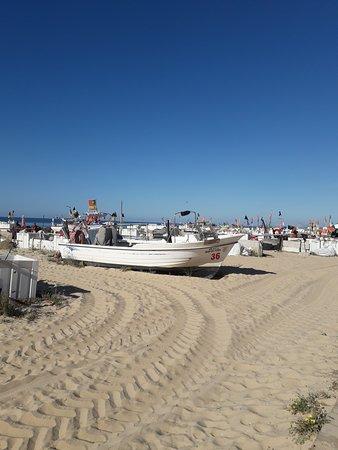Great golden Sandy beach