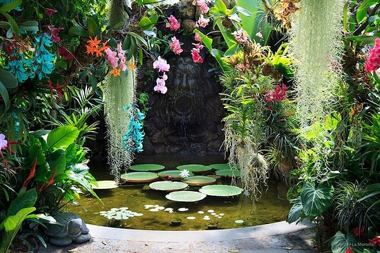 Giardini La Mortella - Kun officiel...