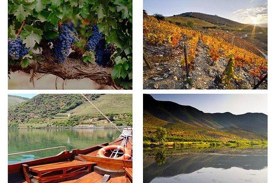 Experiência no Vale do Douro