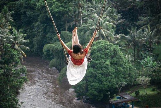 Privat Bali Swing och Ubud Day Tour