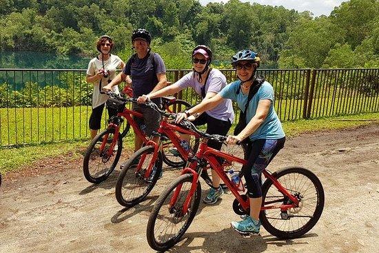 Aventure cycliste à Pulau Ubin