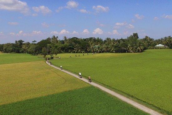 4天骑自行车探索非旅游观光湄公河三角洲的美景