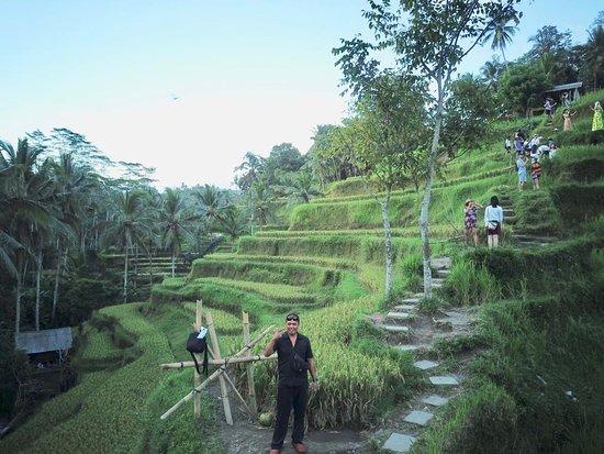 Budi Catura Bali Tour