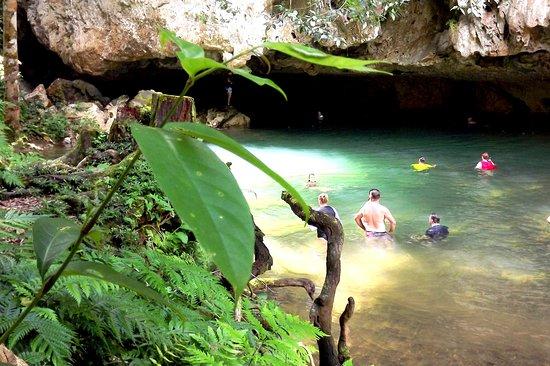 Belize Wild Caribbean Tours