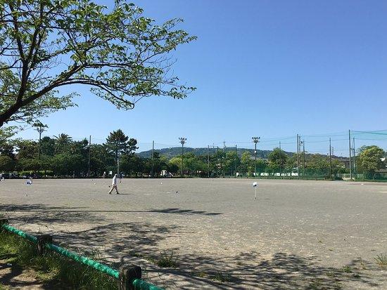 Shimizu Sakuragaoka Park