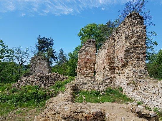 Chateau in Roznow