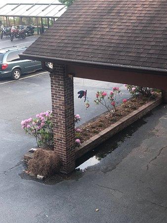 Lovely motel!