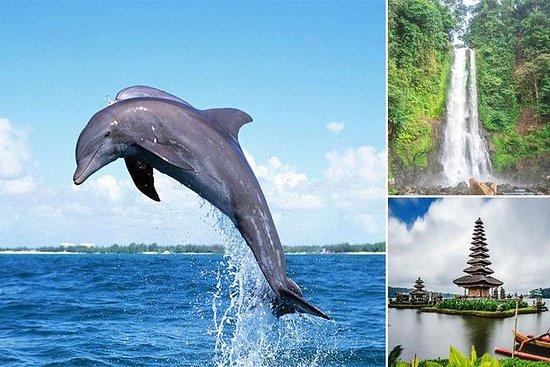 Bali Dolphin Tour a Lovina, Gitgit