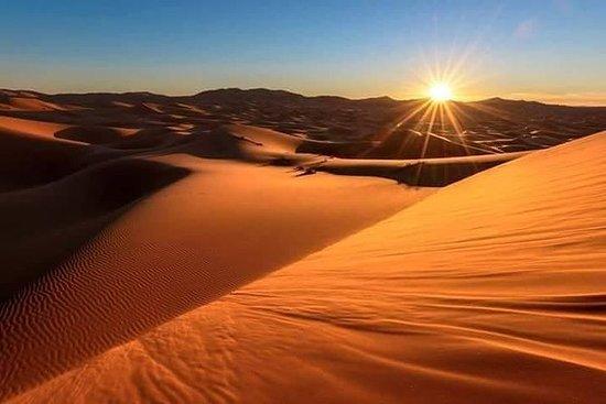 Chigaga Dunes 4x4 Safari, surf de...