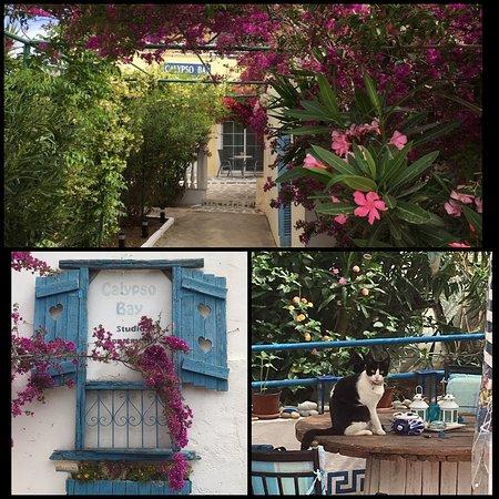 Pigadia, Griekenland: Calypso Bay