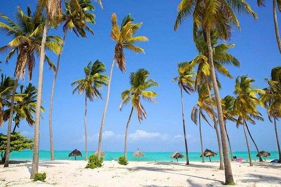 5 dager Zanzibar Beach ferie