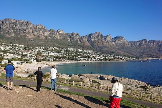Private Full Day Cape Peninsula Tour