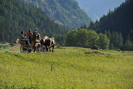 乘坐Gran Paradiso公園的雪橇或馬車