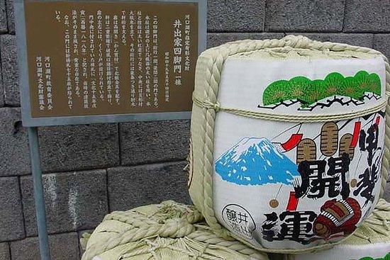 Fra Tokyo: Mt.Fuji Panorama Ropeway...