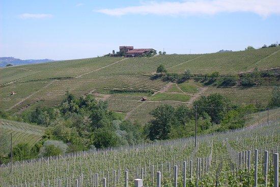 Italian Food and Wine Adventures