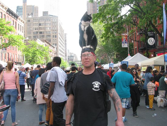 Hell's Kitchen: 9th Ave International Food Festival. A man with a cat on his head. What else would you expect!?