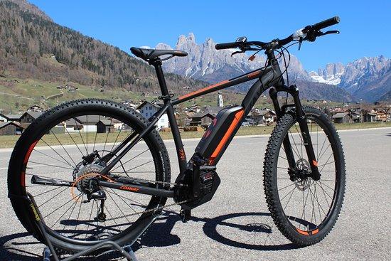 Mezzano, İtalya: Cicli Bettega noleggio ebike