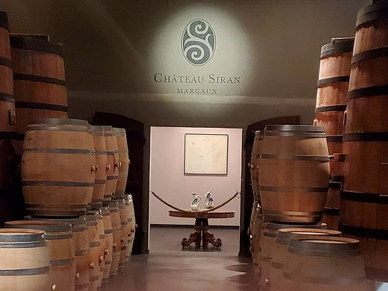 Valokuva: Médoc Region Half-Day Wine Tour with Winery Visit & Tastings from Bordeaux