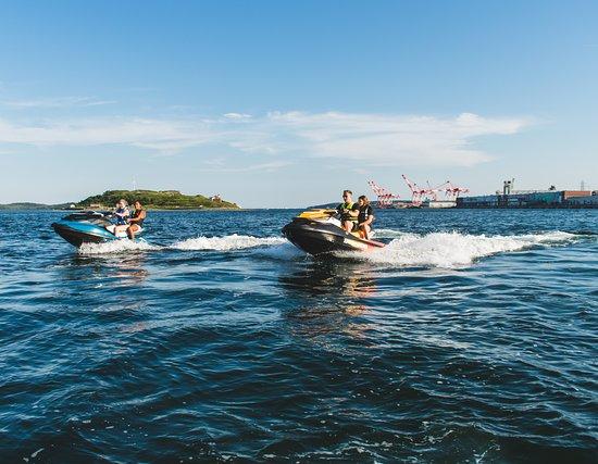 The Harbour Watercraft & Adventure Rentals