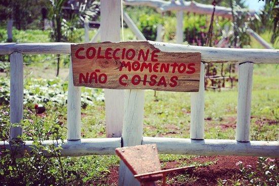 Iguatama: Bom nessa foto é para nós refletirmos , para não colecionarmos mais coisas e sim mais momentos como esse que passamos ai .Obrigada !
