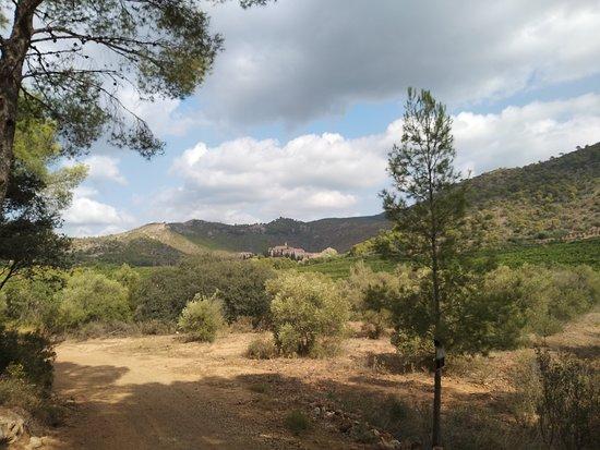 Hiking around Sierra Calderona Natura Park