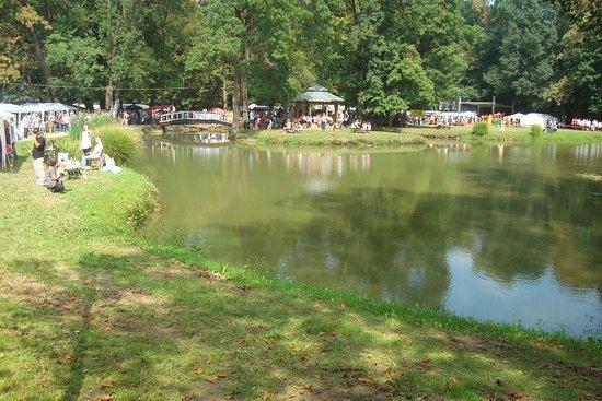 Nasice, โครเอเชีย: Pond in the gardens