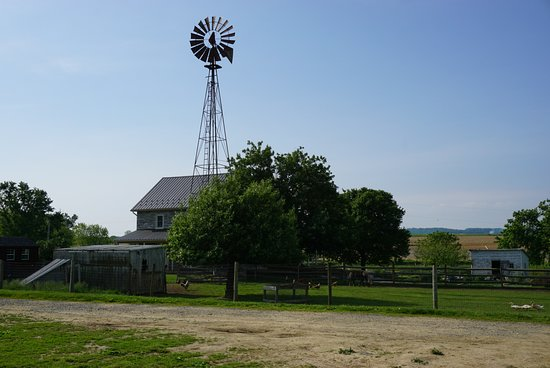 ‪Old Windmill Farm‬