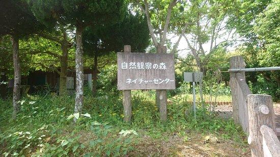 Shizen Kansatsu No Mori