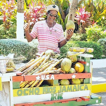 Ocho Rios, Jamaica: Jamaica Sugar Cane & Coconut Experience