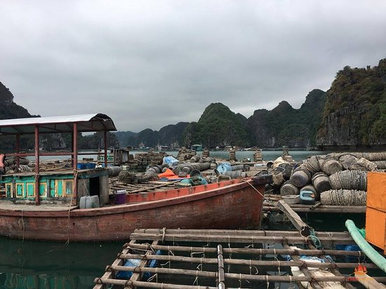 Ethnic Voyage: Indochina Junks - Lan Ha Bay