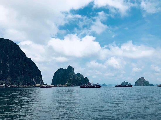 Indochina Junks - Lan Ha Bay