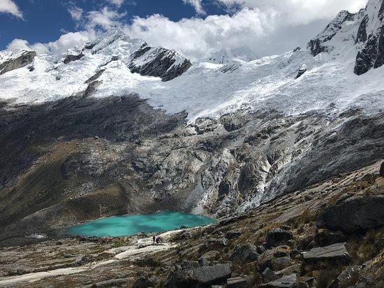 Alpa-K