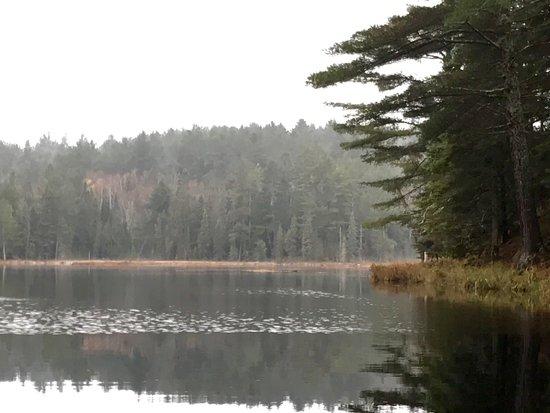 Algonquin Park Region, แคนาดา: Algonquin park trail hike