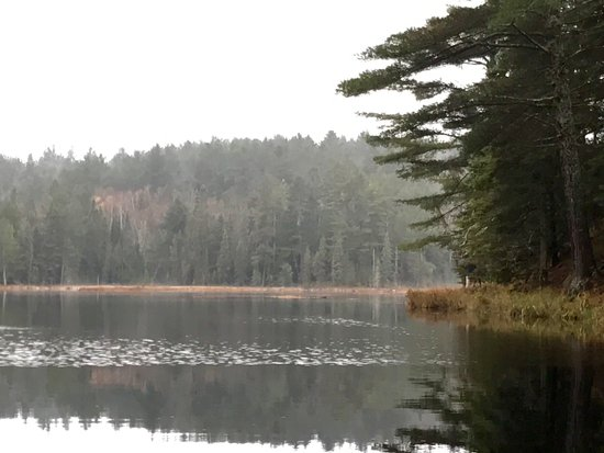 Algonquin Park Region, Canada: Algonquin park trail hike