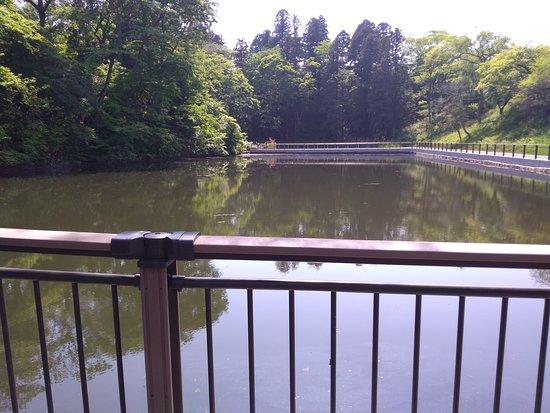 Goshikinuma Pond: 五色沼