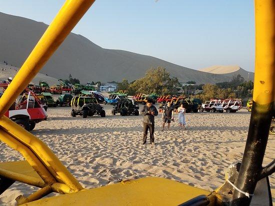 Full Day Paracas from Lima - Group tour – fotografija