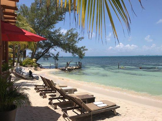 Mar-Bella Rawbar & Grill Isla Mujeres: Fabulous lunch