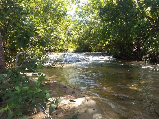 Corguinho Mato Grosso do Sul fonte: media-cdn.tripadvisor.com