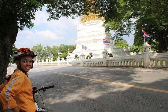 Excursión cultural en bicicleta por...