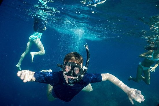 Tour de medio día de snorkeling y 1-2...