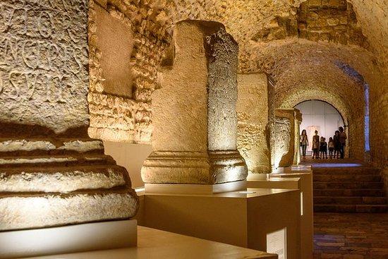 Tarragona romana (visita guiada en...