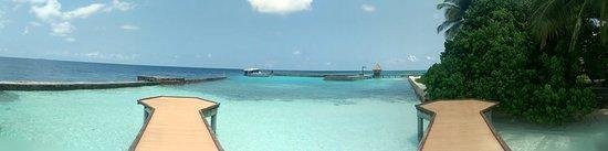 菲哈后岛照片