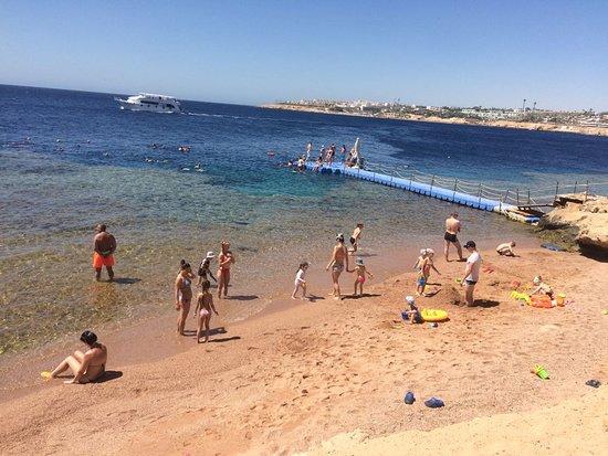 """Grand Oasis Resort: пляж """"детский"""" и пантон"""