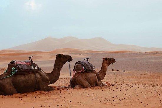 Eco Morocco Travel